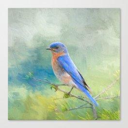 Bluebird In The Garden Canvas Print
