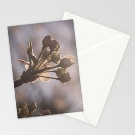 Meeting The Sky Stationery Cards