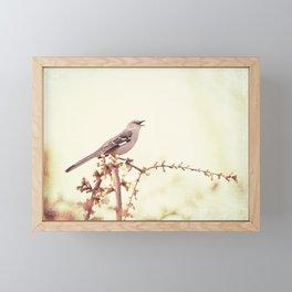 Mockingbird Bird Photography, Mocking Bird on Tree Branch, Nature Photograph Framed Mini Art Print