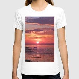 The Flamboyant One T-shirt