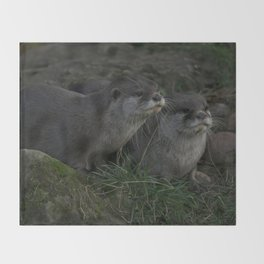 Otter Pair Throw Blanket