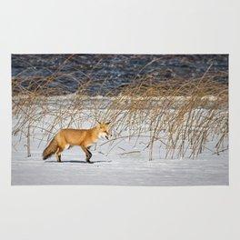 Red Tail Fox on Fish Hook Lake Rug