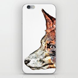Space Fox no3 iPhone Skin