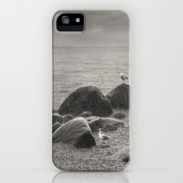 Seagulls in storm, film scanned iPhone Case