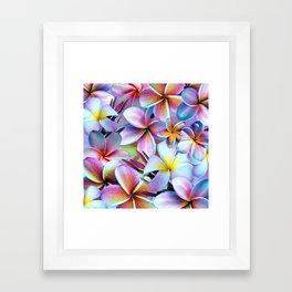 Rainbow Plumeria Framed Art Print