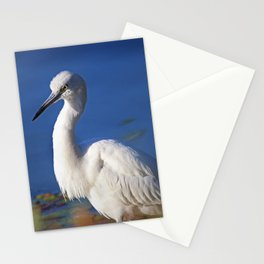 Profound Inner-Knowledge Stationery Cards