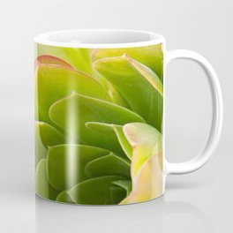 BEAUTIFUL SUCCULENT Coffee Mug