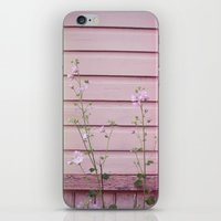 finland iPhone & iPod Skins featuring Porvoo I- Finland by Cynthia del Rio