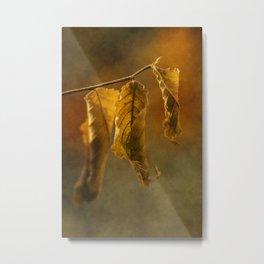 Autumn #13 Metal Print