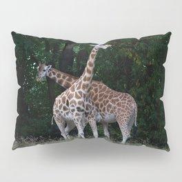 giraffes Pillow Sham