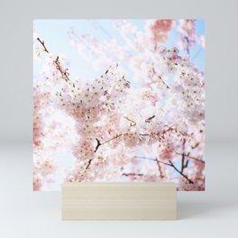 Soft Pink and White #pinkflower Mini Art Print