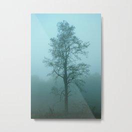 one tree shenandoah national park Metal Print