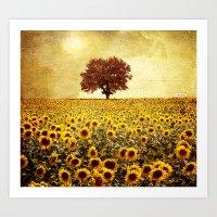 sunflowers Art Prints featuring lone tree & sunflowers field by Viviana Gonzalez
