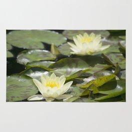 Longwood Gardens - Spring Series 303 Rug