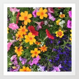 Floral-o-rama Art Print