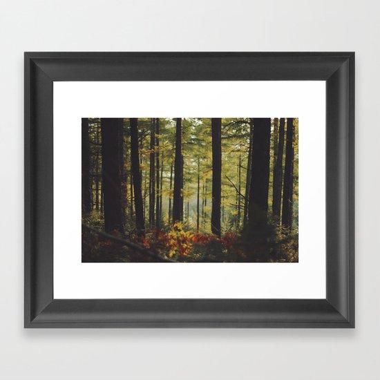 Autumn Wood Framed Art Print