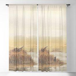 Hunting Pintail Ducks Sheer Curtain