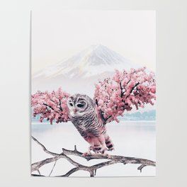 Sakura Owl Poster