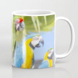 Curious macaws Coffee Mug