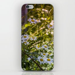 Continuous Matters iPhone Skin