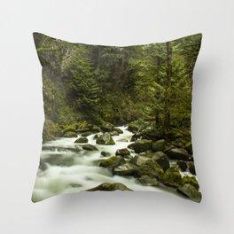 Rios de Oregon 1 Throw Pillow