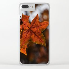 Maple Clear iPhone Case