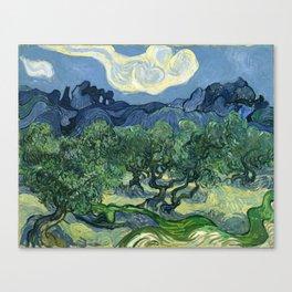Vincent van Gogh - The Olive Trees Canvas Print