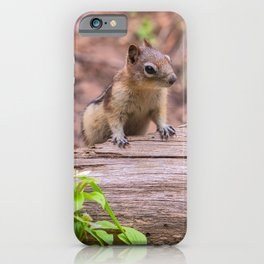 Let Me Check it Out iPhone Case