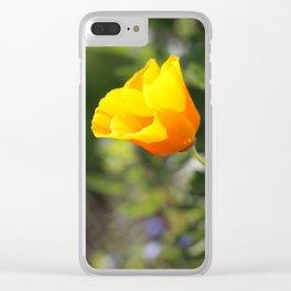 Sunlit Eschscholzia californica Clear iPhone Case