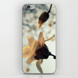 First Blush iPhone Skin