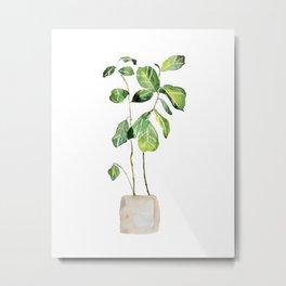 Fig tree watercolor  Metal Print