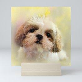 Bella - Shih Tzu Puppy Mini Art Print