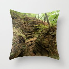 Fern Canyon at Starved Rock State Park Illinois Throw Pillow