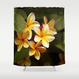 Elegant Simplicity is the Hawaiian Plumeria Shower Curtain