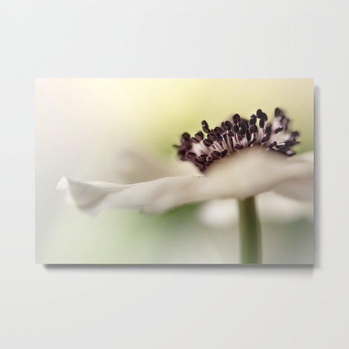 Gently touching the light... Metal Print