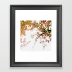 Autumn Origami Framed Art Print