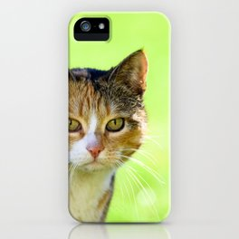 Beautiful mottled cat in garden. iPhone Case