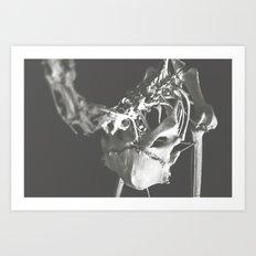 Carcass, 01 Art Print