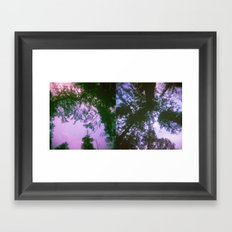 Tree Dreams Framed Art Print