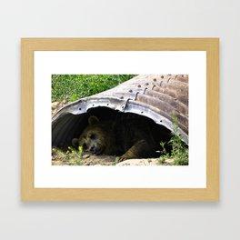 Rexburg Idaho - Bear Time Framed Art Print