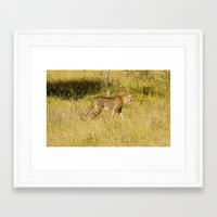 south africa Framed Art Prints featuring Africa by L McLeod