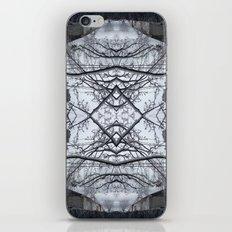 Winter2 iPhone & iPod Skin