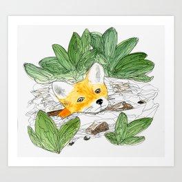 Fox Hole Art Print