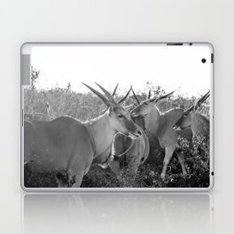 Herd of Eland stand in tall grass in African savanna Laptop & iPad Skin