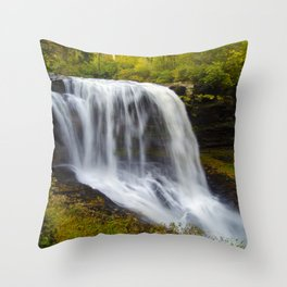 Silky waterfall Throw Pillow