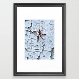 Virginia Spider Framed Art Print