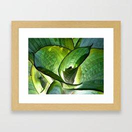 Hosta - Inverted Art Framed Art Print