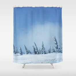 Winter day 12 Shower Curtain