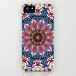 Floral mandala-style, Spring blossoms 002.2.2 iPhone Case