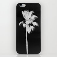 santa monica iPhone & iPod Skins featuring Santa Monica  by HUDSON DESIGNS